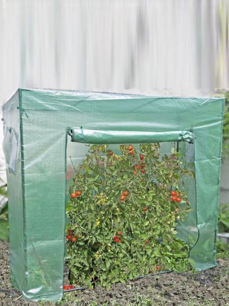 Tomatengewächshaus groß