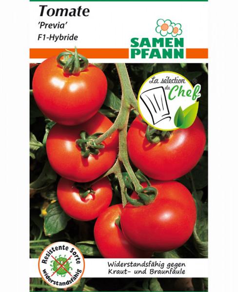 Tomate 'Previa' - F1-Hybride (Art.Nr. G891)