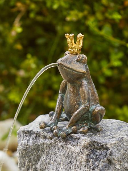 Froschkönig Lars