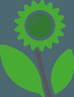 Zur Kategorie |    Gartenpflanzen    |