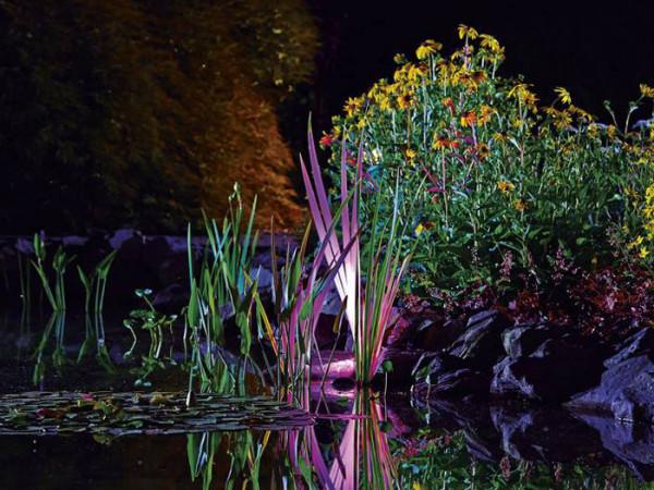 Profilux Garden LED RGB von OASE (Art.Nr.42638)