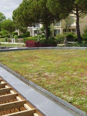Gründach-Paket für 15 qm Dachfläche