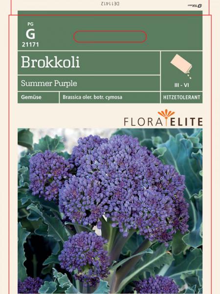 Brokkoli 'Summer Purple' (Art.Nr. 21171)