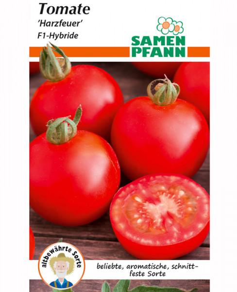 Frühe Tomate 'Harzfeuer F1' (Art.Nr. G881)