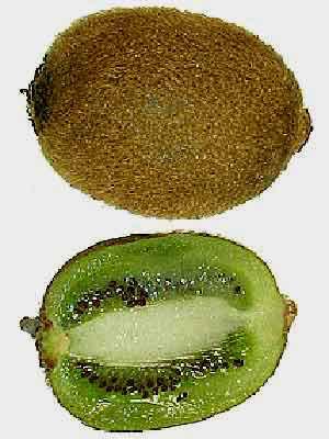 Kiwi mit Fruchtfleisch