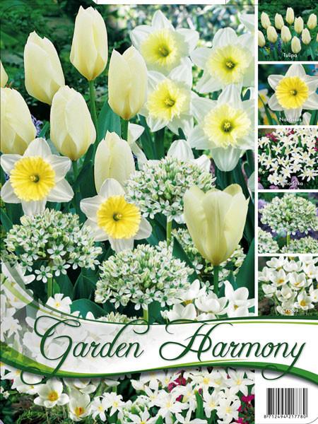 Edle Farbkombination 'Weißer Garten' (Art.Nr. 598244)