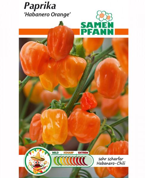 Paprika 'Habanero Orange Chili' (Art.Nr. G583)