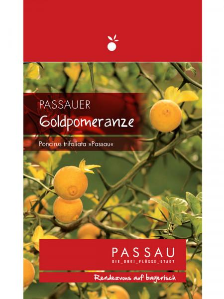 Passauer Goldpomeranze, Poncirus trifoliata 'Passau'