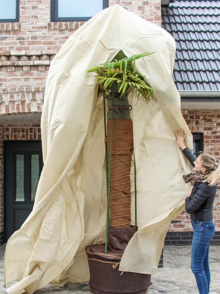 Winterschutz Palmen-Vlieshaube