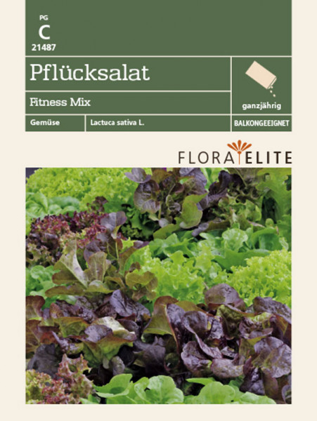 Pflücksalat 'Fitness Mix' (Art.Nr. 21487)