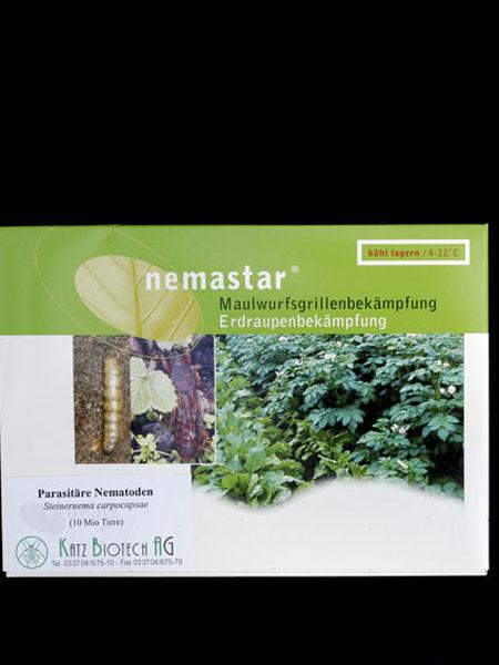 Maulwurfsgrillen-Nematode (Art.Nr. KB4166)