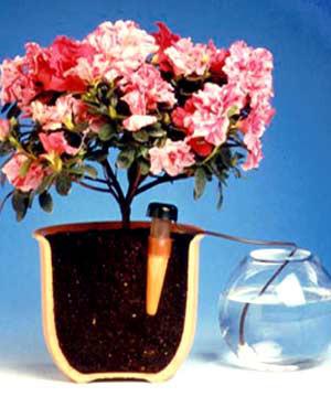 Blumat-Bewässerung (Artikel-Nr. 249415)