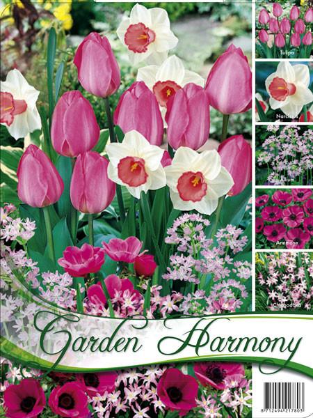 Edle Farbkombination 'Rosa Garten' (Art.Nr. 598242)