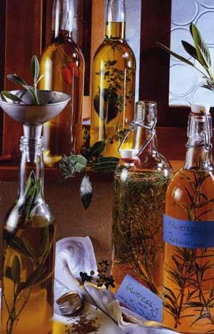 Kräutersortiment zur Herstellung von Kräuteressig und Kräuteröl