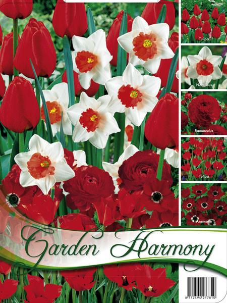Edle Farbkombination 'Roter Garten' (Art.Nr. 598243)