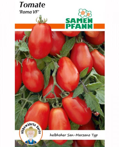 Tomate 'Roma' (Art.Nr. G877)