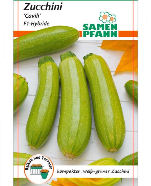 Zucchini 'Cavili' - F1-Hybride (Art.Nr. G519)