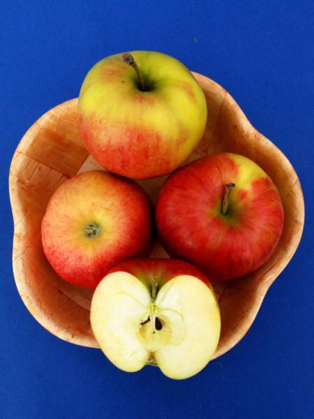 Äpfel Jonagold im Korb
