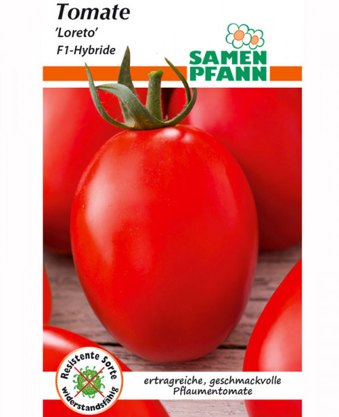 Tomate 'Loretto' - F1-Hybride (Art.Nr. G880)