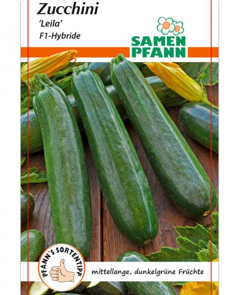 Zucchini 'Leila' - F1-Hybride (Art.Nr. G517)