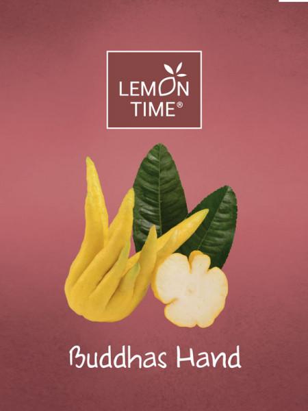 Zitronenbaum 'Buddhas Hand' - Lemon Time®