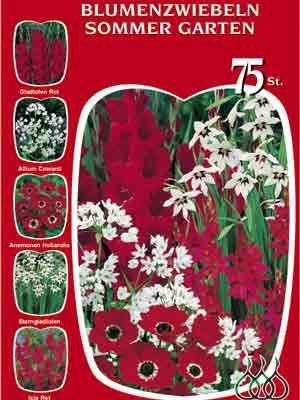 Sortiment Sommergarten rot und weiß (Art.Nr. 522632)