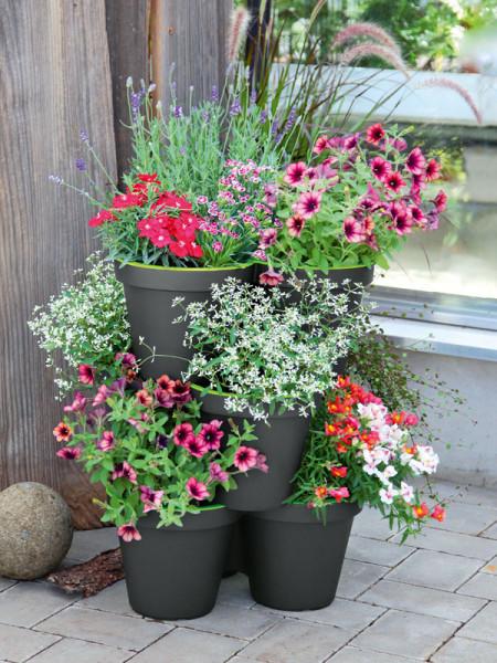 3er Säulentopf E&K bepflanzt