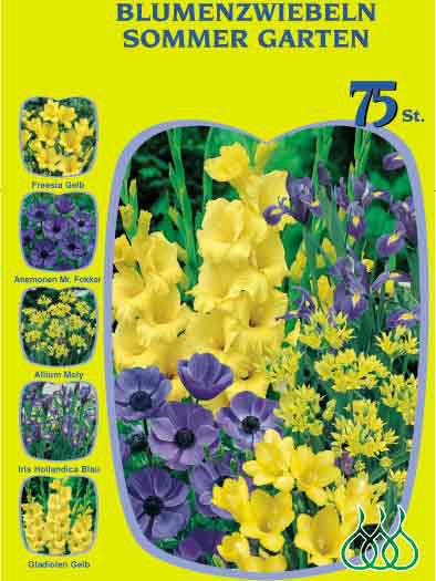 Sortiment Sommergarten gelb und blau (Art.Nr. 522628)