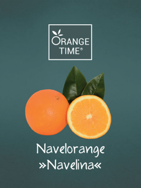 Orangenbaum 'Navelina' - Orange Time®