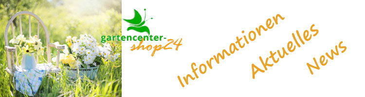Blog-Gartencenter-shop24567185eb35d4a