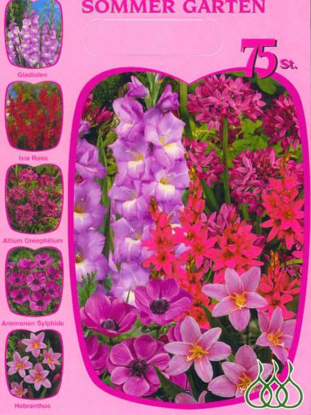 Sortiment Sommergarten rosa (Art.Nr. 522624)