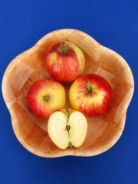 Schale mit Apfel Reglindis