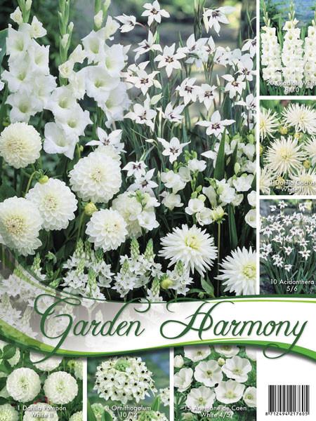 Sortiment Weißer Garten (Art.Nr. 522452)