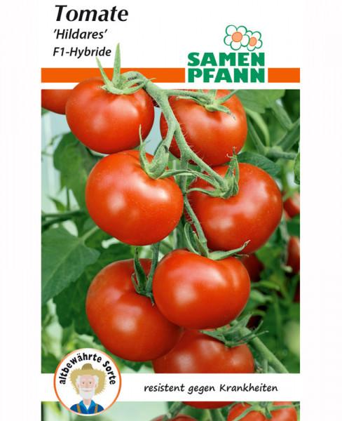Tomate 'Hildares' - F1-Hybride (Art.Nr. G870)