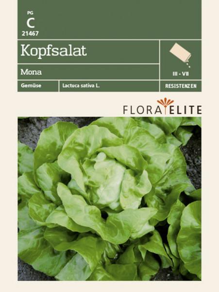 Kopfsalat 'Mona' (Art.Nr. 21467)