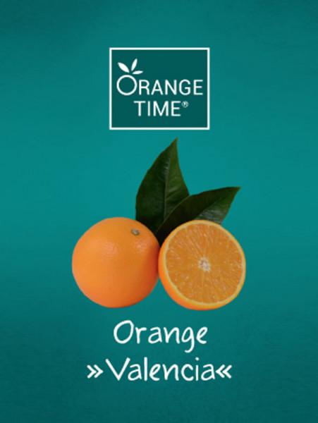 Orangenbaum 'Valencia' - Orange Time®