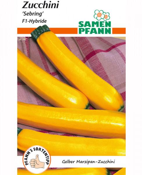 Zucchini 'Sebring' - F1-Hybride (Art.Nr. G498)