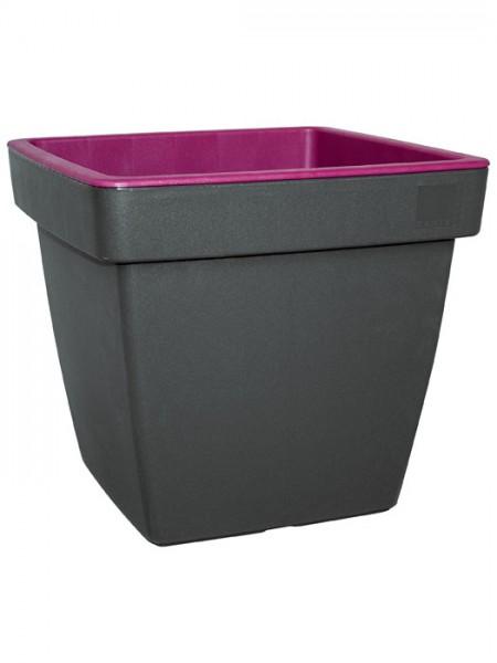 Pflanzkübel E&K Bicolor eckig purpur