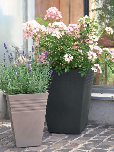 Pflanzkübel Moderno bepflanzt