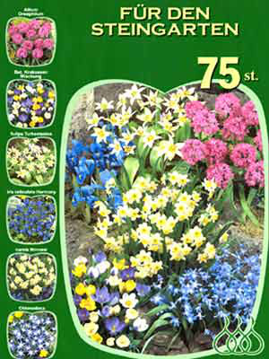 Sortiment Blumenzwiebeln für den Steingarten (Art.Nr. 598204)