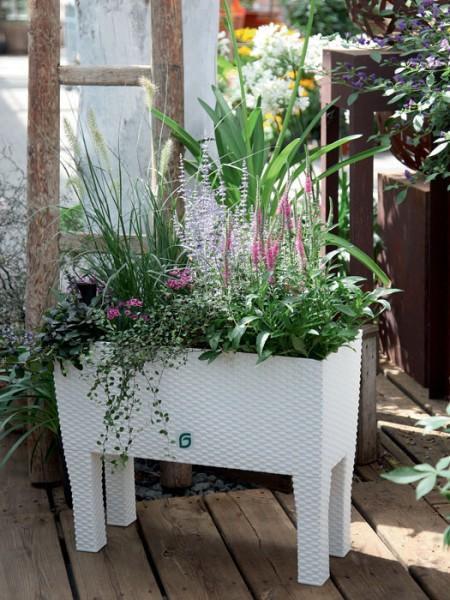 Blumenkasten Rato Case high in Flechtoptik