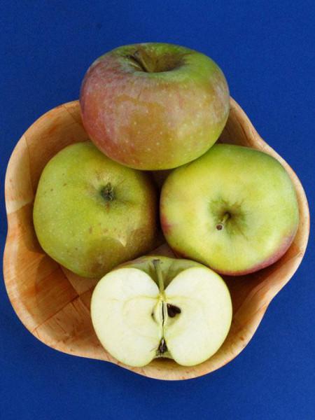 Äpfel Ontario im Korb