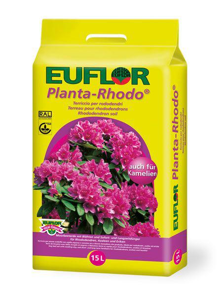 Euflor Planta-Rhodo