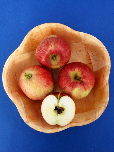 Schale mit Apfel Resi