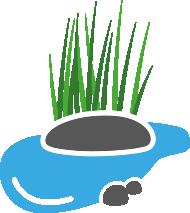 Zur Kategorie |    Wassergarten    |