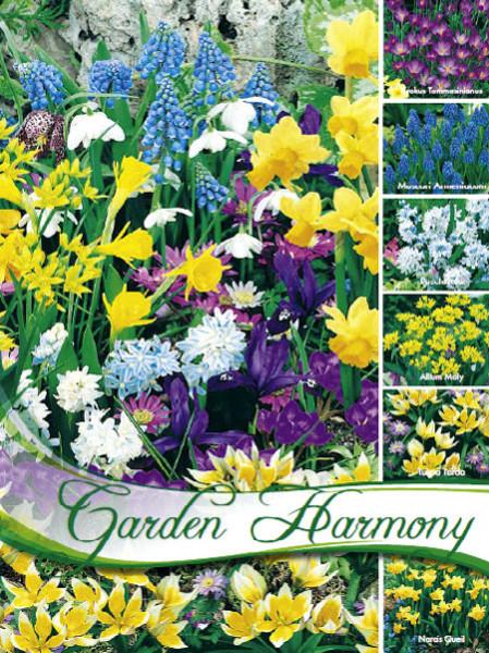 Kollektion Blumenzwiebeln zum Verwildern (Art.Nr. 598200)