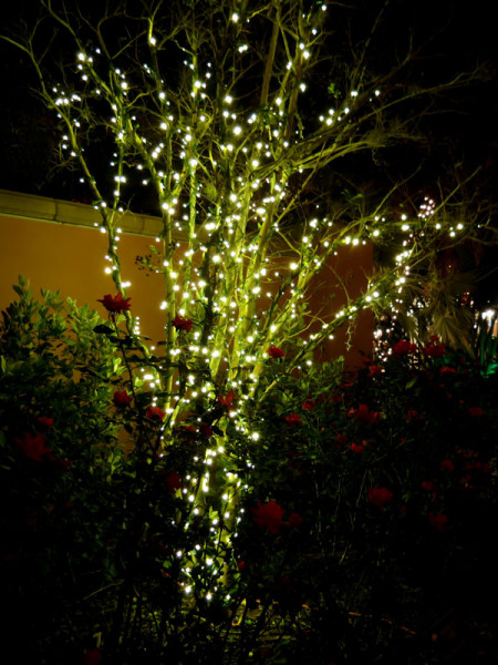 Lichterkette 'Linea' von Garden-Lights (Art.Nr. 7510012)