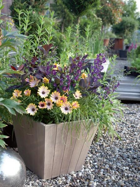 Pflanzkübel Woody quadratisch bepflanzt