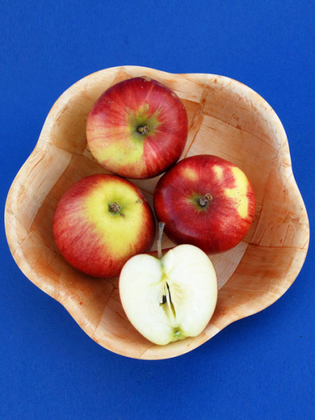 Schale mit Apfel Retina