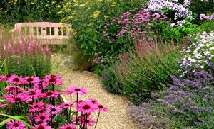 Pflanzen für den Bauerngarten